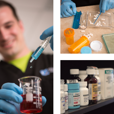 Grid of images from Genesis pharmacy technician program